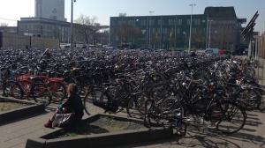 Rotterdam Fahrräder Holland